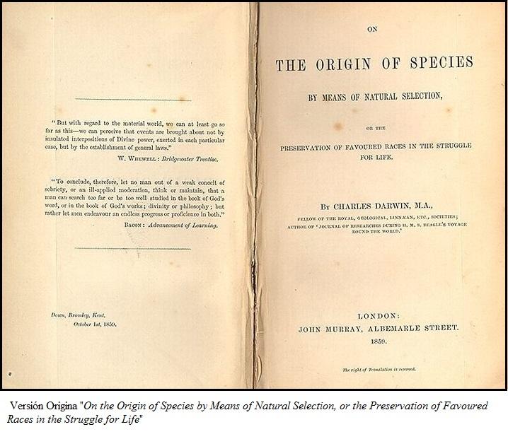 10 Grandes Libros de Divulgación Científica